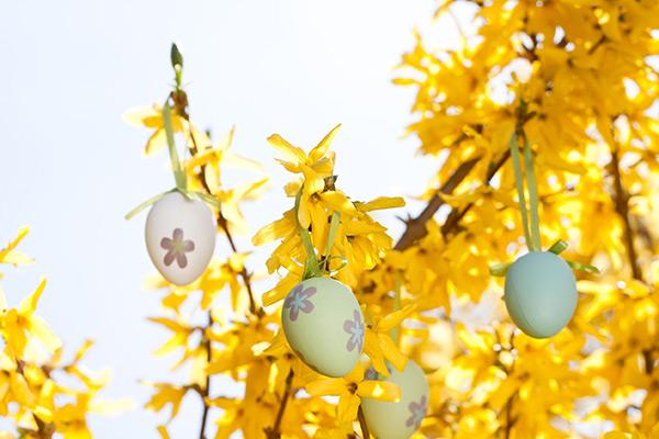 Was wir vom Frühling und von Ostern für die Traumaheilung lernen können